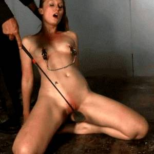 Whip Pussy by Torturepain